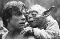 Fim da polêmica! Saiba quem de fato trolou Luke Skywalker